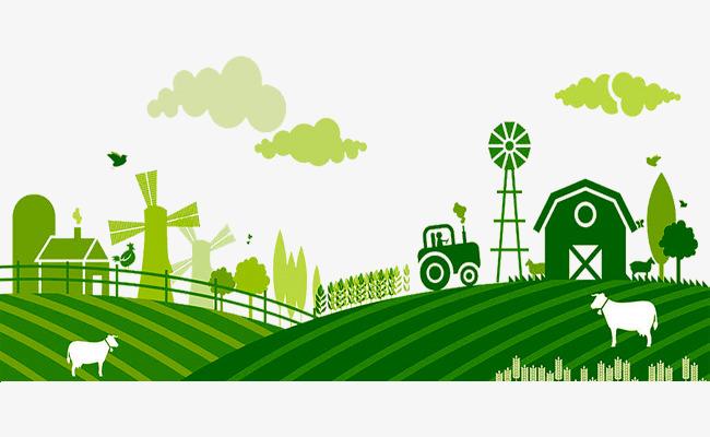 Особливості використання і розпорядження земельними ділянками сільськогосподарського призначення