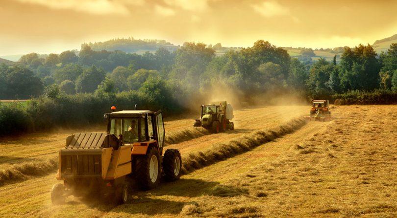 Дотації для фермерів: короткий аналіз державної підтримки на 2019 рік
